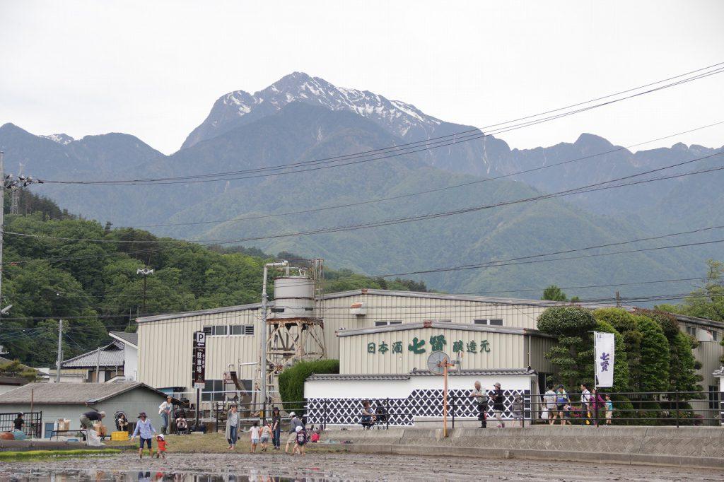 七賢・ふれあい自然塾「田植え」山